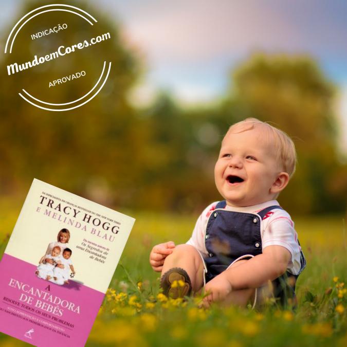 Dica de leitura: A encantadora de bebês