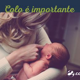 Bebês têm necessidade de colo